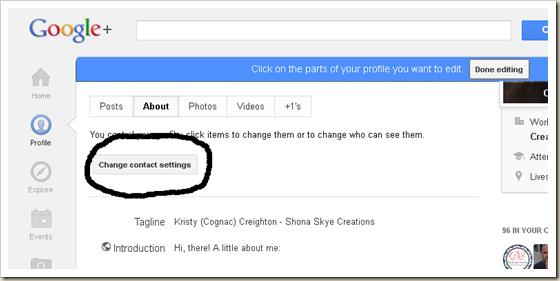 Shona Skye Creations - Enable Replies with Google  Profile 003