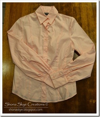 Shona Skye Creations - Goodwill Hunting 2013-01-14 (3)