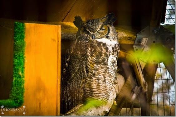 Lone Elk Park & World Bird Sanctuary