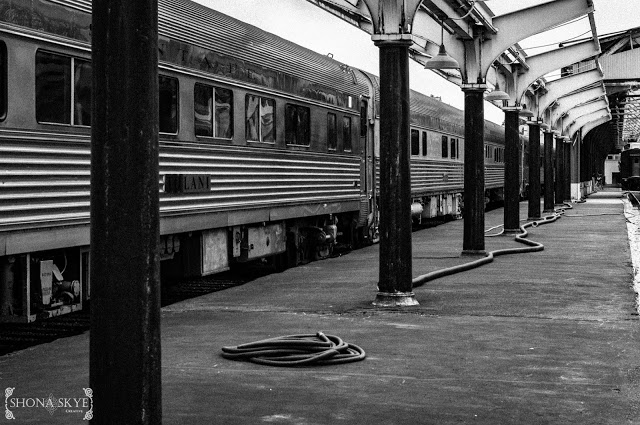 St. Louis, MO, Missouri, Trains, Train, Railway, Railroad, Amtrak, Black & White, Union Station