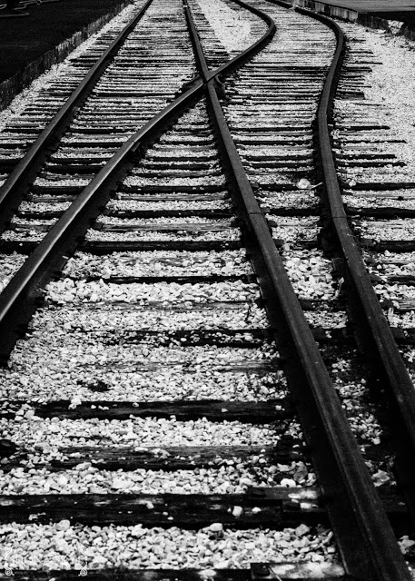 Railroad, Railway, Tracks, Trains, Amtrak, Union Station, St. Louis, MO, Missouri, Black and White,
