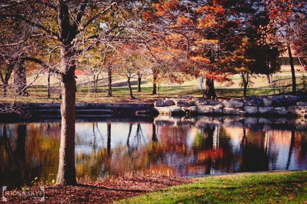 Water, Pond, Lake, Colors, Leaves. St. Peter's, City Hall, MO, Missouri, Fall Landscape